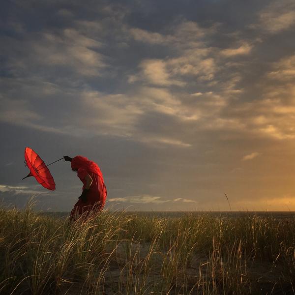 Fotógrafo do Ano, 2º Prémio: Robin Robertis (EUA) - She Bends with the Wind