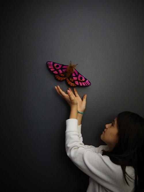 borboletas-YumiOkita01