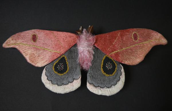 borboletas-YumiOkita04