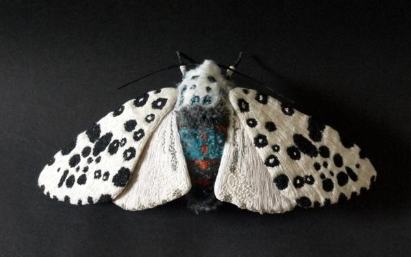borboletas-YumiOkita05