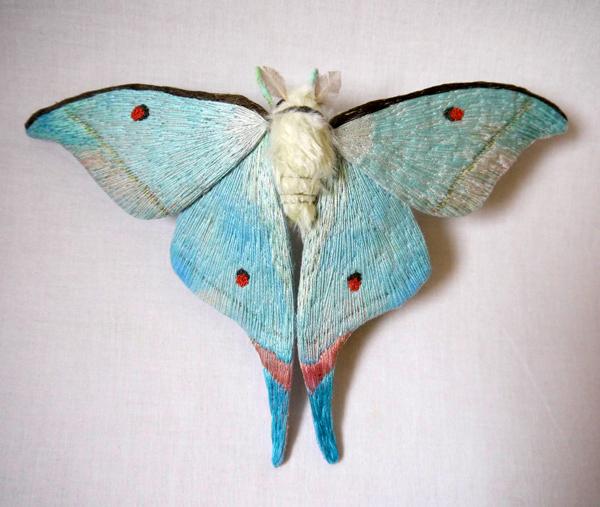 borboletas-YumiOkita08