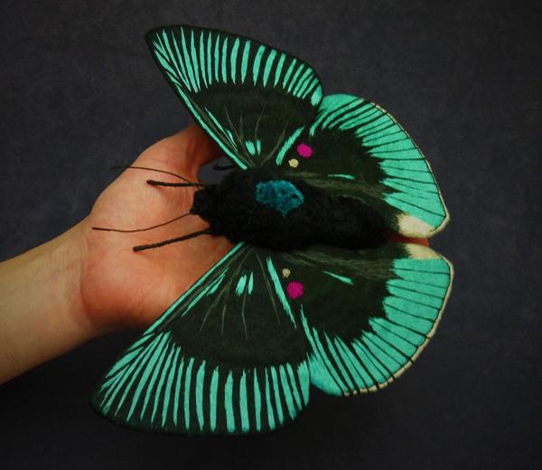 borboletas-YumiOkita10