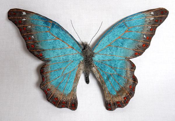 borboletas-YumiOkita11
