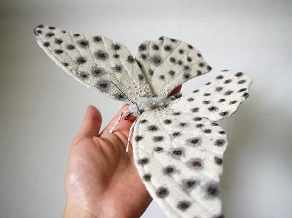 borboletas-YumiOkita15