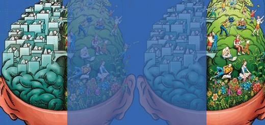 fisiologia-do-cerebro