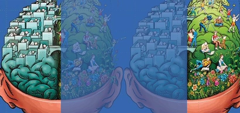 fisiologia do cérebro